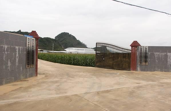 广西青青农业有限公司合作博优种子二维码系统